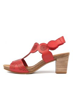 CATALINA ROSSO PUNCH LEATHER