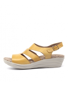 WANTS YELLOW LEATHER